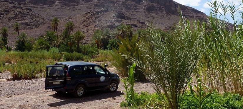 Oasis de Fint - Maroc Légendes Evasions