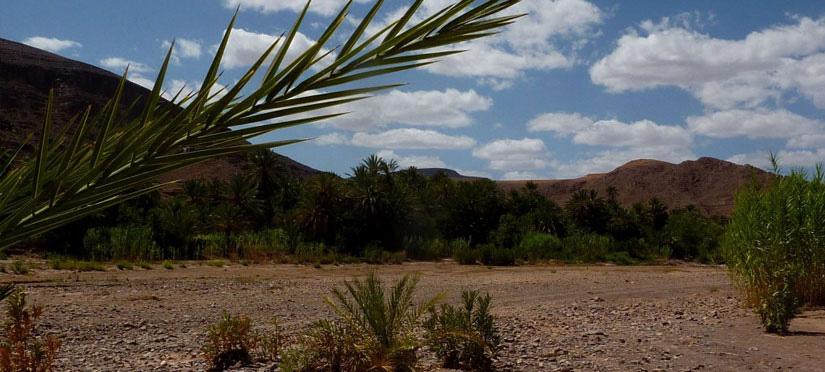 Oasis de Fint maroc