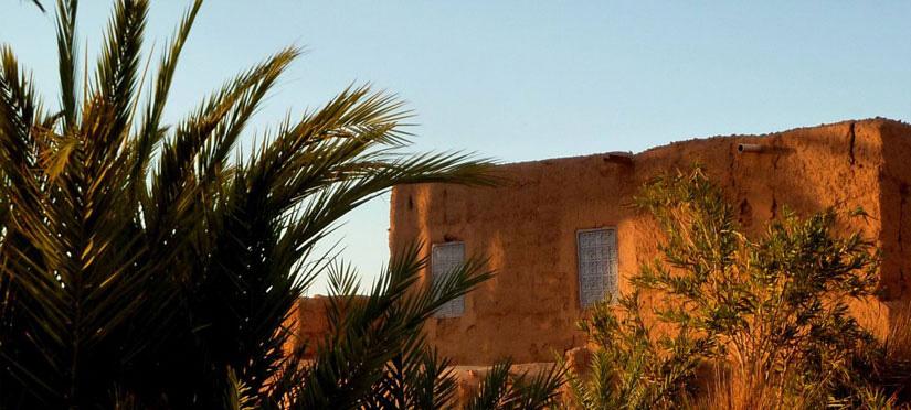 Oasis de Naga Maroc